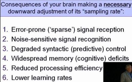 brain_adjustment_of_sampling_rate_2008