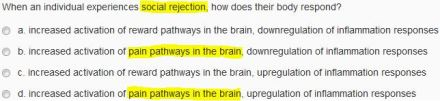 social_rejection_and_pain_pathways_in_the_brain
